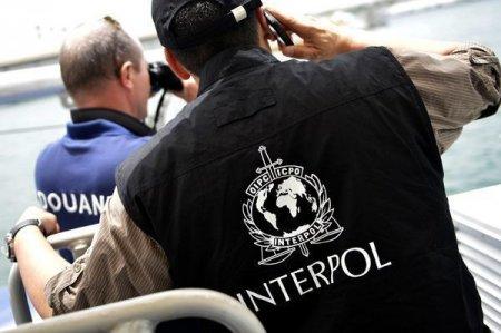 Azərbaycanda İnterpolun axtardığı 115 nəfərin yeri müəyyənləşib