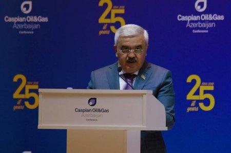 Rövnəq Abdullayev: Təbii qazın Avropaya nəqlinin bir addımlığındayıq