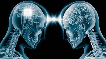 Beyin üçün ən faydalı 7 məhsul