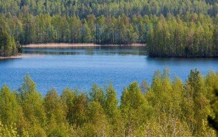 Almaniya polisi meyiti tapmaq üçün gölü qurudacaq