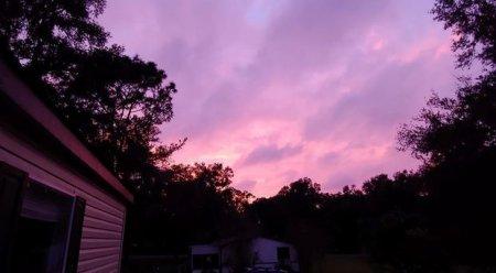 Florida səması bənövşəyi rəngə boyandı