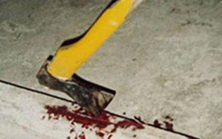 Gədəbəy sakini arvadını baltalayıb, qonşusunu ölümcül döydü
